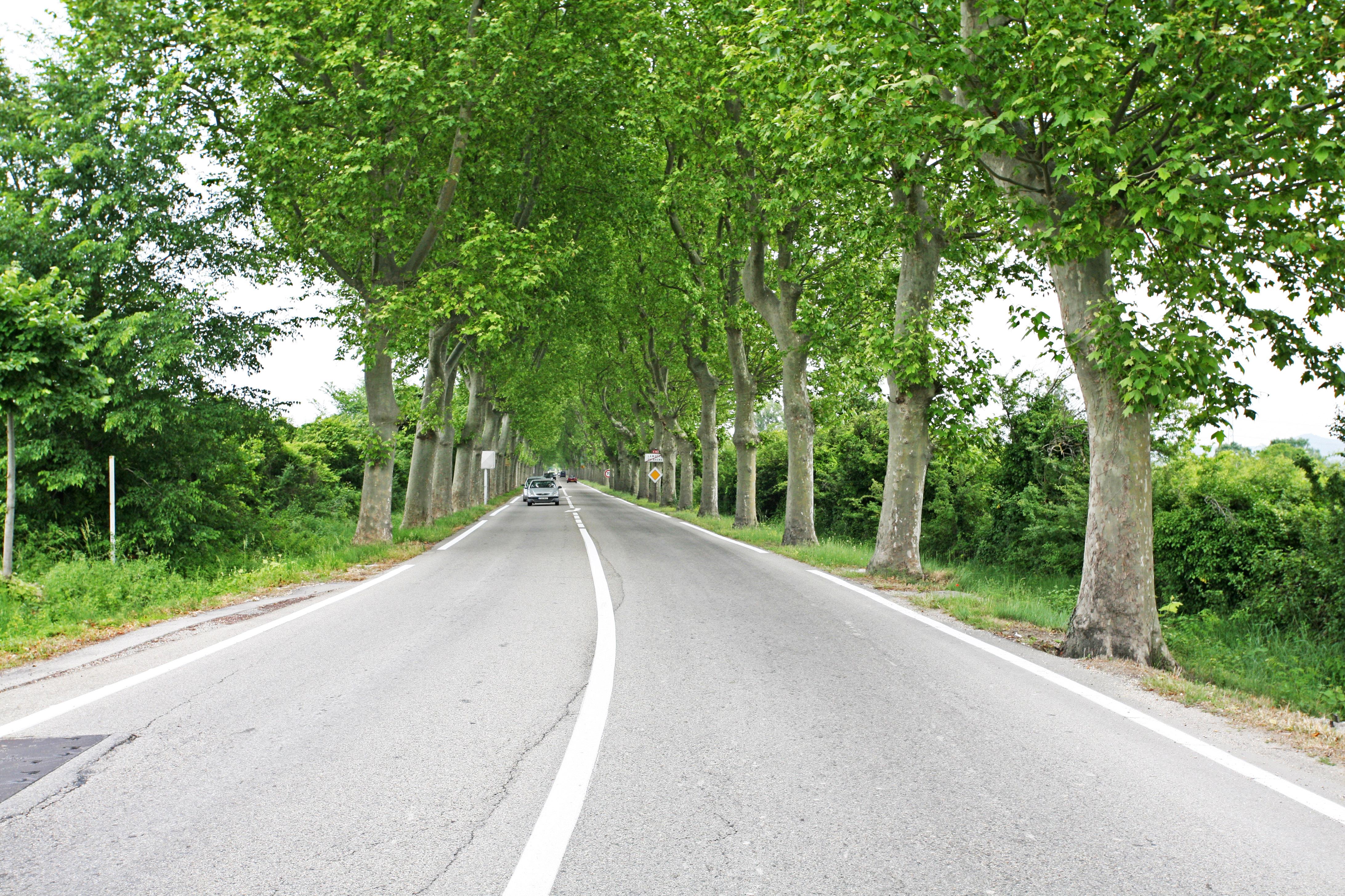 Route départementale France - Législation 80km/h ou 90 kmh ?